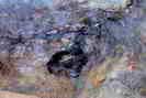 Mines d'argent du Fournel - Cellule médiévale